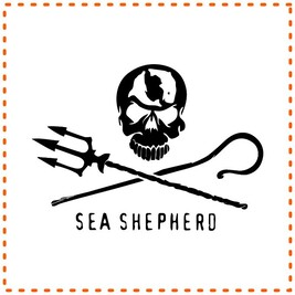 Sea Shepherd Donation