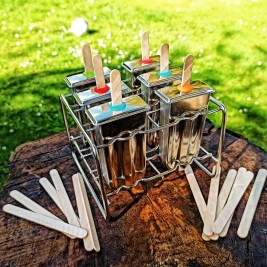 Stainless Steel Popsicle and Ice Cream Moulds (x6) with Rack