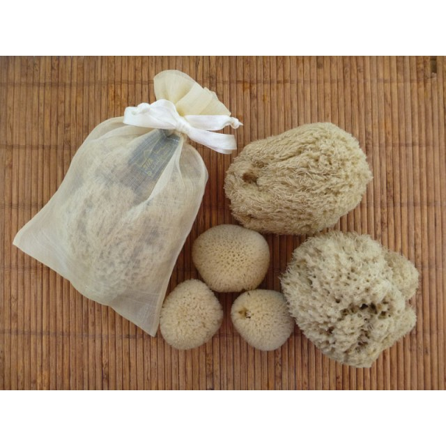 Sustainable Bath Sponge