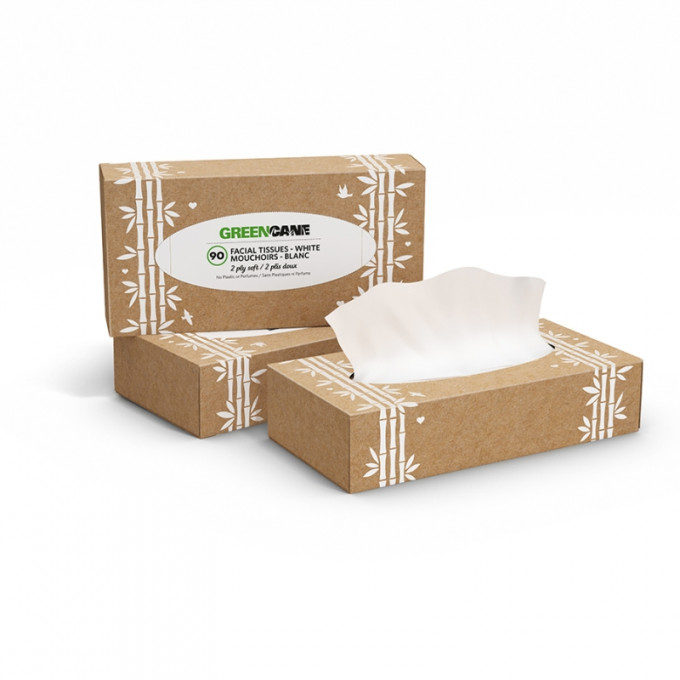 Facial Tissues, box of 90, 2ply soft and white